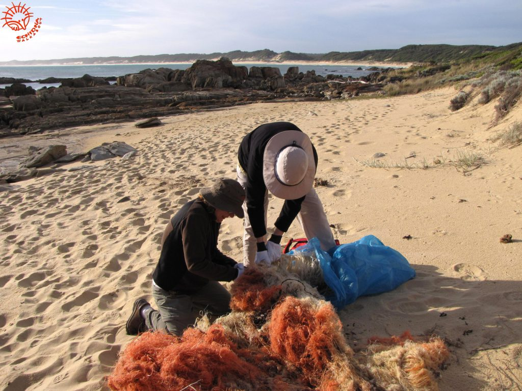 Wildlife conservation fishing net removal