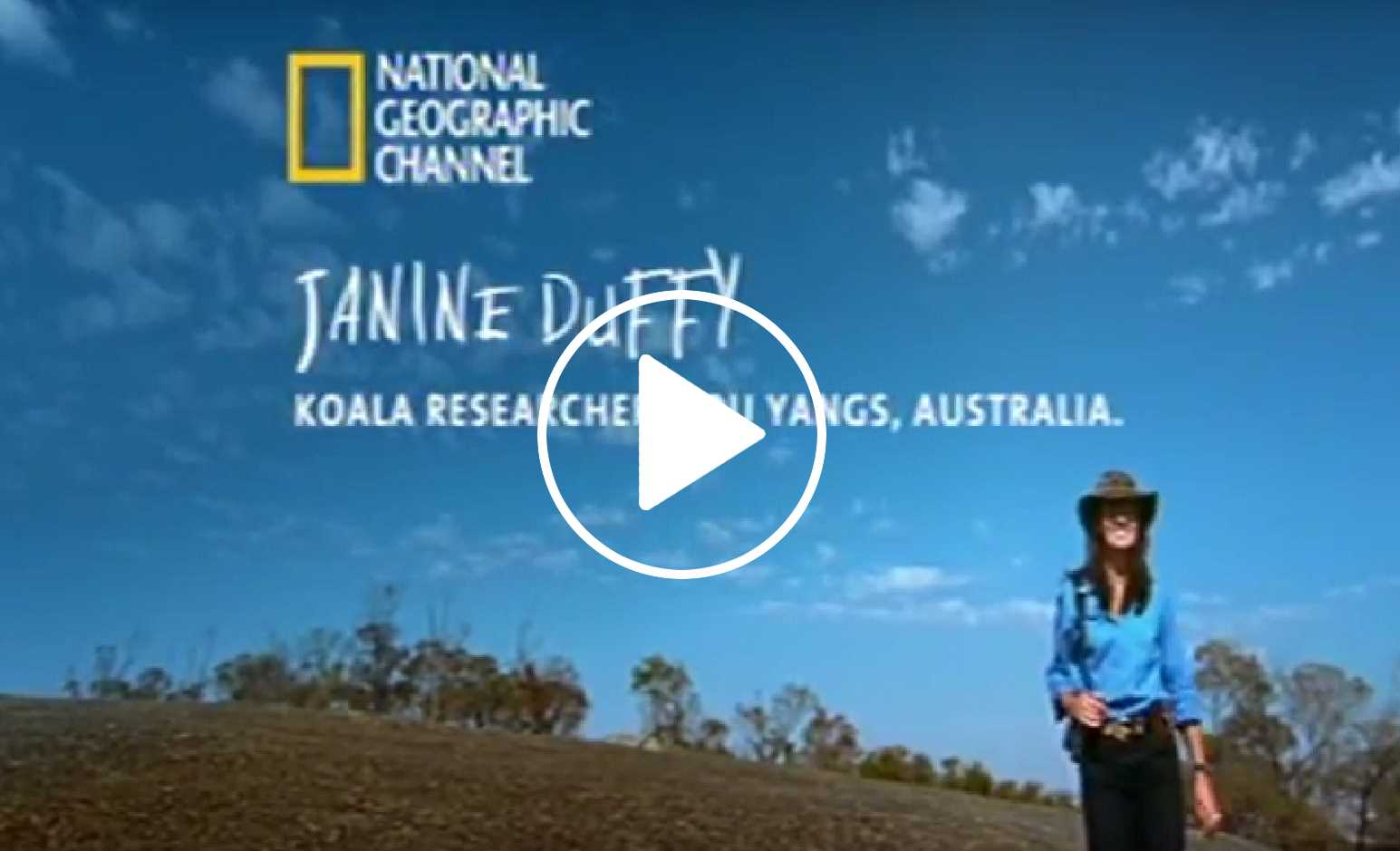 National Geographic video about Echidna Walkabout's Koala Research project