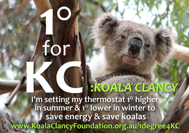 One Degree for Koalas #1degree4KC