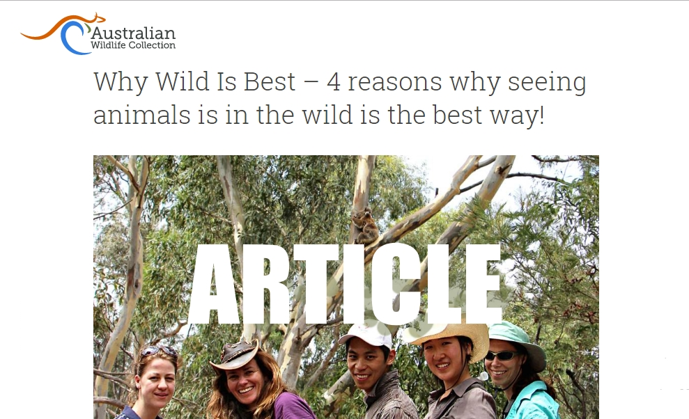 Why in the wild nature tours are best for wildlife, travellers and locals