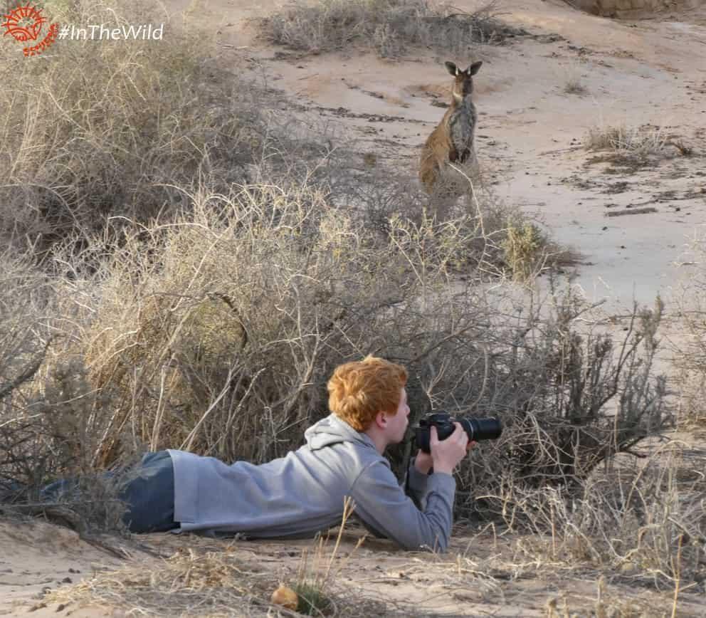 boy photographer with kangaroo