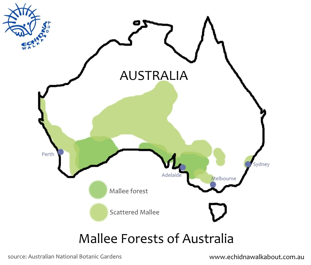 map showing mallee regions of Australia