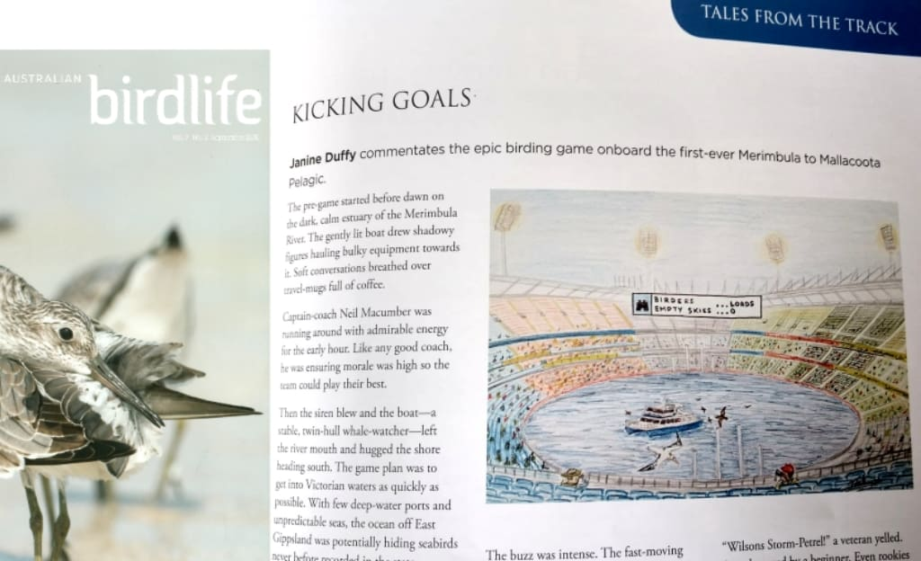 Janine Duffy article in BirdLife magazine