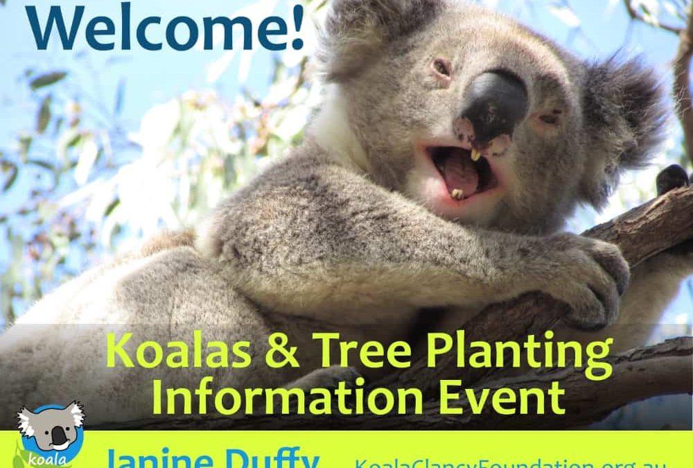 koala tree planting event