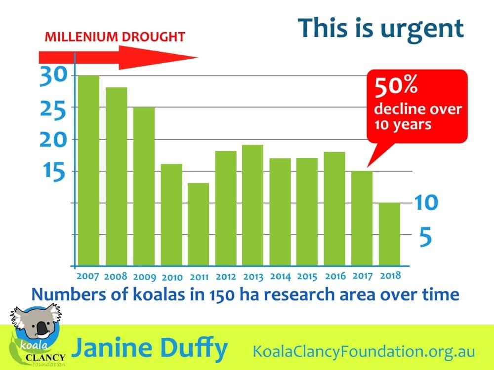 You Yangs koalas decline graph