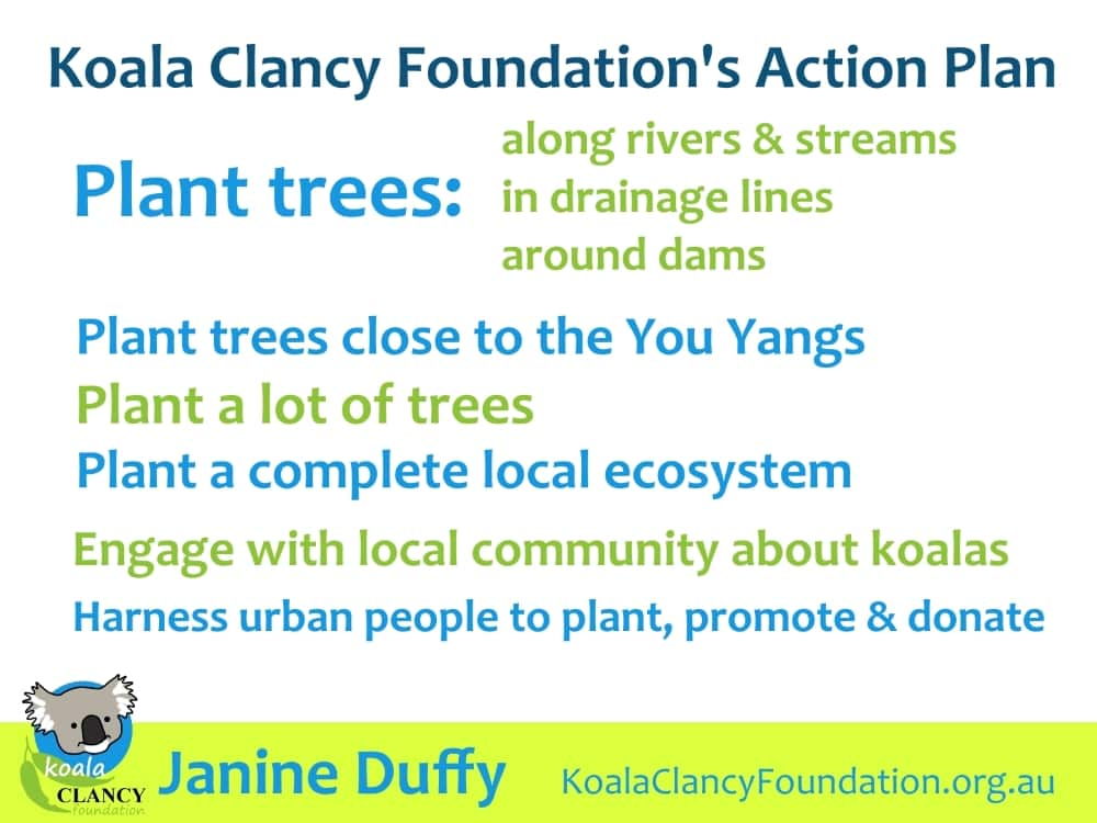tree planting plan for koalas Melbourne
