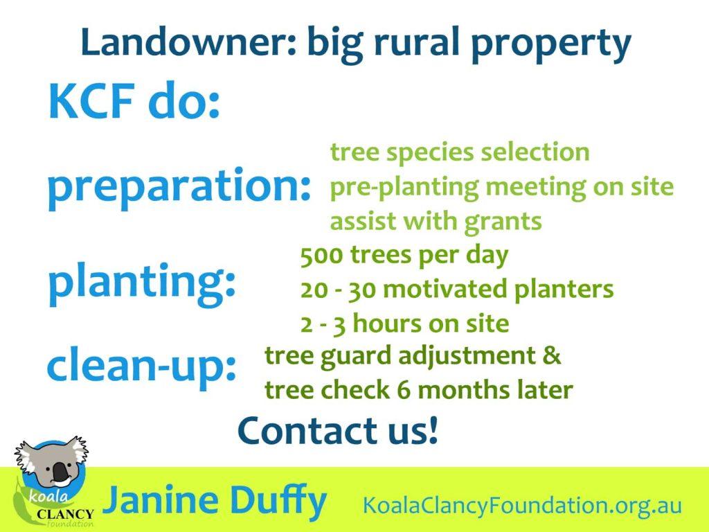 koala tree planting plan big property
