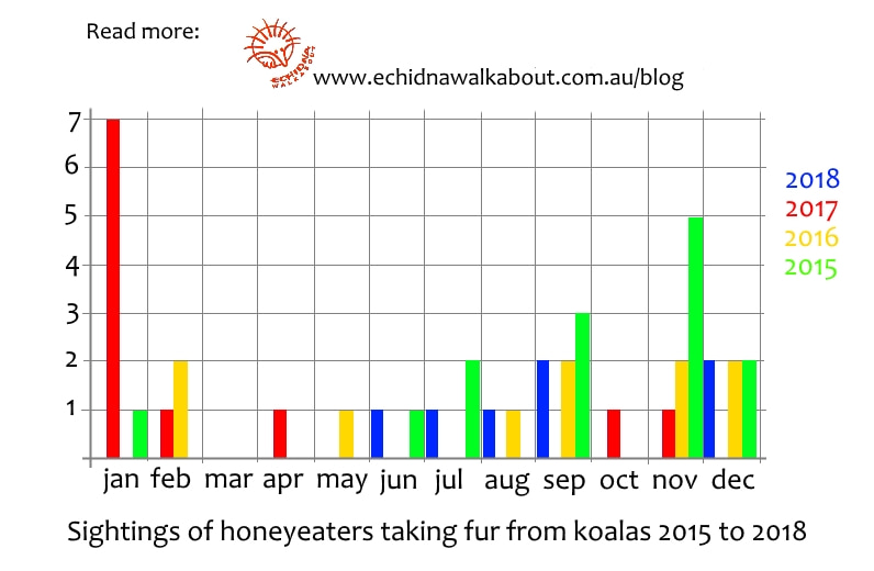 Graph diagram chart of honeyeaters collecting fur from koalas You Yangs Victoria