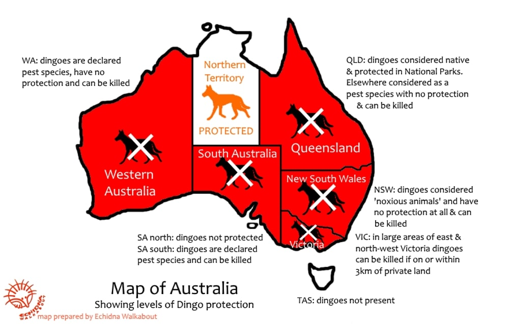map of Australia showing where dingoes are protected