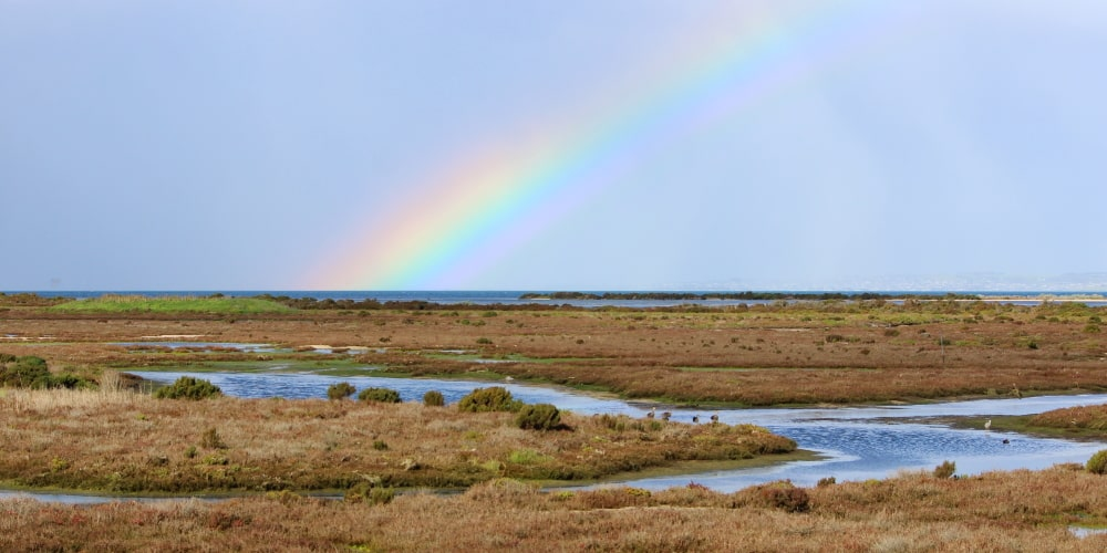 rainbow photo why visit Western Treatment Plant Victoria