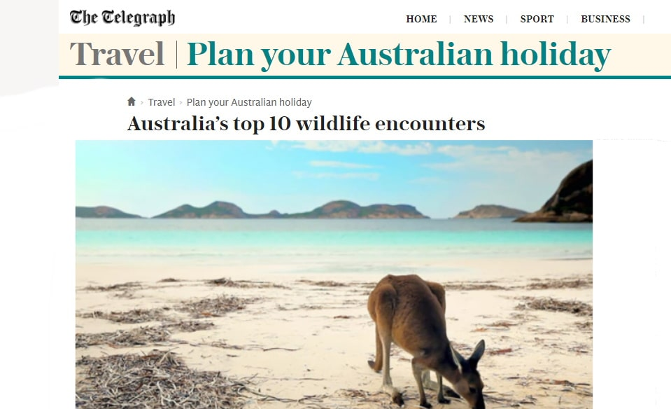 Echidna Walkabout in 10 best wildlife experiences