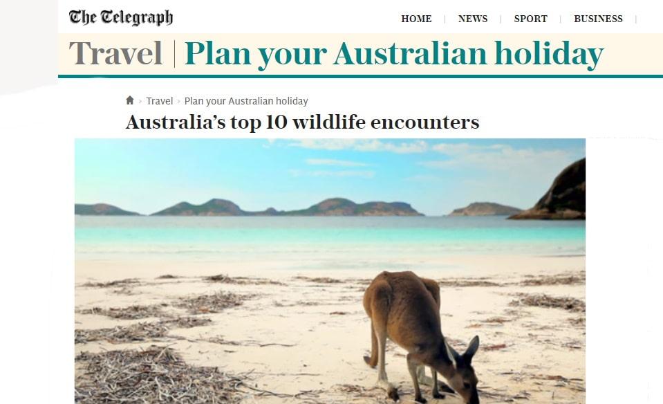 Echidna Walkabout in 10 best wildlife experiences